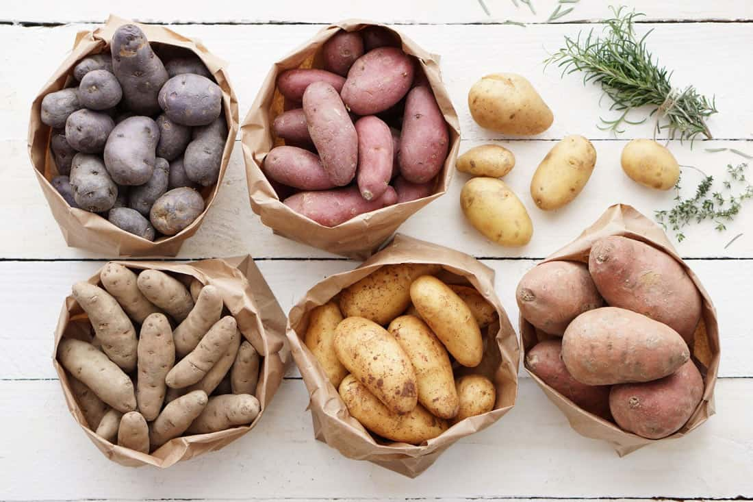 What Type Of Potato Is Best For Baking