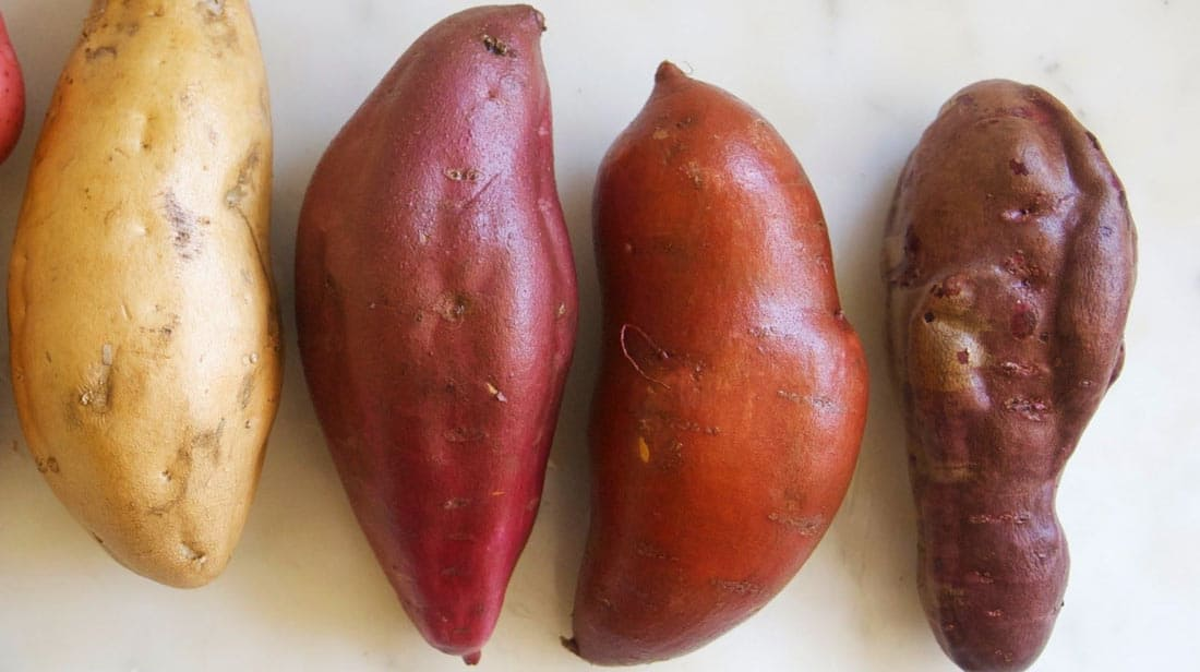 Differences between a Japanese sweet potato and a regular sweet potato: